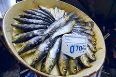 Dried Sardines Stock Photos