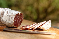 Dried sausage. Food, gastronomy, cooking,cookery Stock Photography