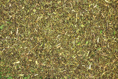 Dried savory leaves  background Stock Image