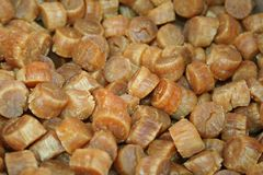 Dried scallops. Dried seafood scallops for sale Stock Images