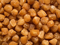 Dried scallops Stock Images