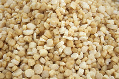 Dried scallops Royalty Free Stock Images