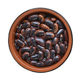 Dried Scarlet Runner Beans Stock Images