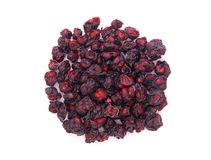 Dried schisandra chinensis fruits Stock Image