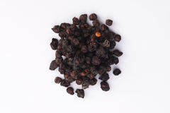 Dried schisandra chinensis fruits Stock Photography