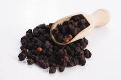 Dried schisandra chinensis fruits Stock Photos