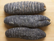 Dried sea cucumber Stock Photos