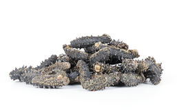 Dried sea cucumber Stock Images