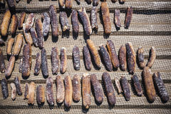 Dried Sea Cucumbers Royalty Free Stock Photography