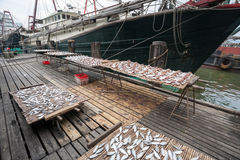 Dried sea fish on the pier in the port of Macao. Royalty Free Stock Image
