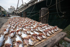 Dried sea fish on the pier in the port of Macao. Stock Photo