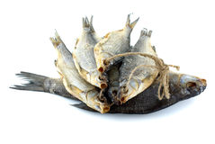 Dried sea roach fishes and bream fish. Five dried sea roach fishes on the rope and bream fish isolated on the white background Royalty Free Stock Photo