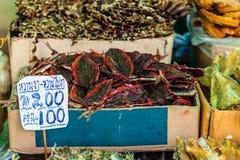 Dried seafood in Bangkok Royalty Free Stock Photo