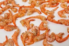 Dried seafood shrimp royalty free stock images