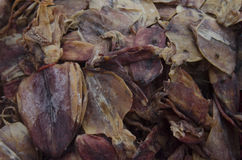 Dried Seafood Royalty Free Stock Photos