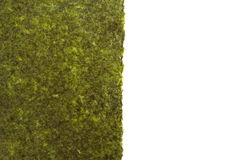 Dried seaweed Stock Images