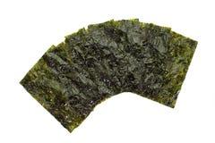Dried seaweed,nori Stock Photo