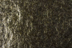 Dried Seaweed Sheets Texture Royalty Free Stock Image