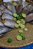 Dried Sepat Siam with Kaffir lime to protect fishy smell Stock Images