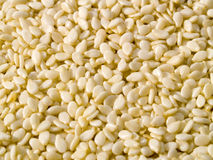 Dried Sesame Seed Background Royalty Free Stock Photography