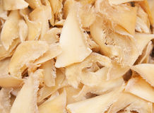 Dried shark fins Royalty Free Stock Photo
