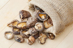 Dried shiitake mushroom Stock Photography