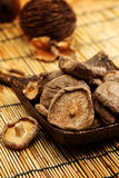Dried Shiitake Mushroom Royalty Free Stock Image