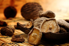 Dried Shiitake Mushroom on mat earth tone Stock Image
