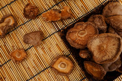 Dried Shiitake Mushroom Royalty Free Stock Photo