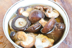 Dried Shiitake Mushroom Stock Photo