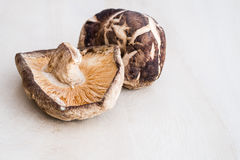 Dried Shiitake mushroom on wooden table Stock Image