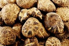 Dried shiitake mushrooms Stock Photo