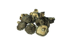 Dried shiitake mushrooms Stock Images