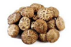 Dried shiitake mushrooms Royalty Free Stock Photos