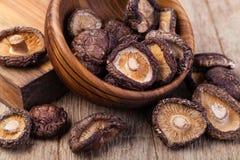 Dried shitake mushroom Royalty Free Stock Images