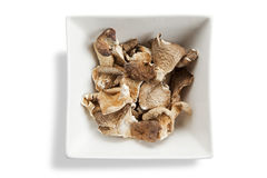 Dried shitake mushrooms in square bowl Royalty Free Stock Photography