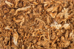 Dried shredded pork Royalty Free Stock Images