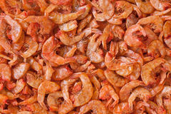 Dried shrimp. Prepared for cooking in thailand market Stock Photos
