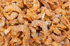 Dried shrimp Stock Photography