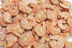 Dried shrimp Stock Image