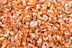 Dried shrimp background. At market Royalty Free Stock Photo
