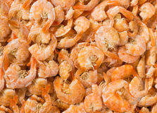 Dried Shrimp Background Royalty Free Stock Photography