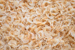 Dried shrimp Stock Photography