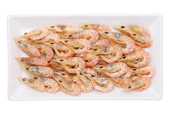Dried shrimp on plate Royalty Free Stock Image