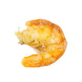 Dried shrimp Royalty Free Stock Image