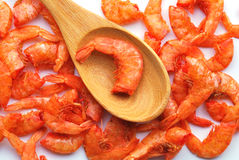 Dried shrimp Stock Images