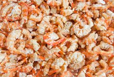 Dried shrimps Stock Images