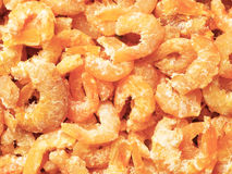 Dried shrimps Stock Image