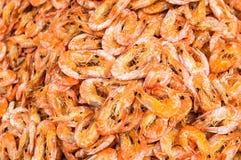 Dried Shrimps Background Stock Photos