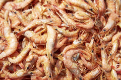 Dried Shrimps. Close up of sun rdied seafood, traditional preserved food: Dried Shrimps for making Asian cuisines Royalty Free Stock Images